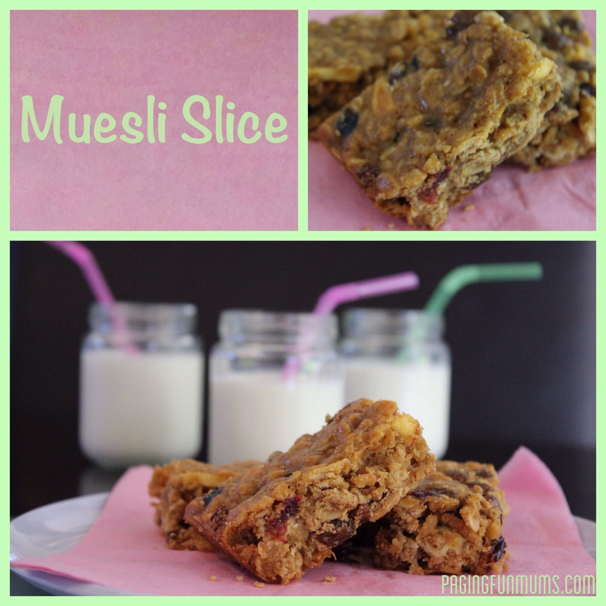 Muesli Slice – (Louise)