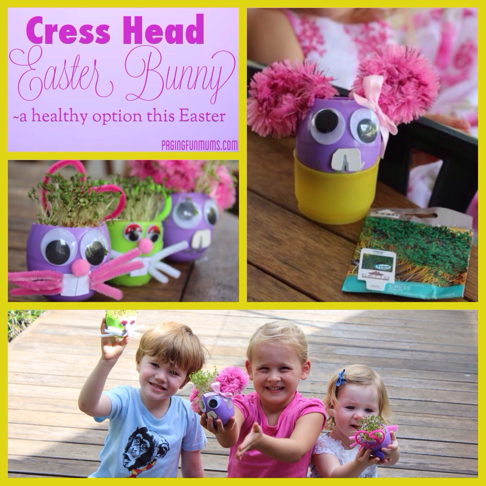 Cress Head Easter Bunny – (Louise)