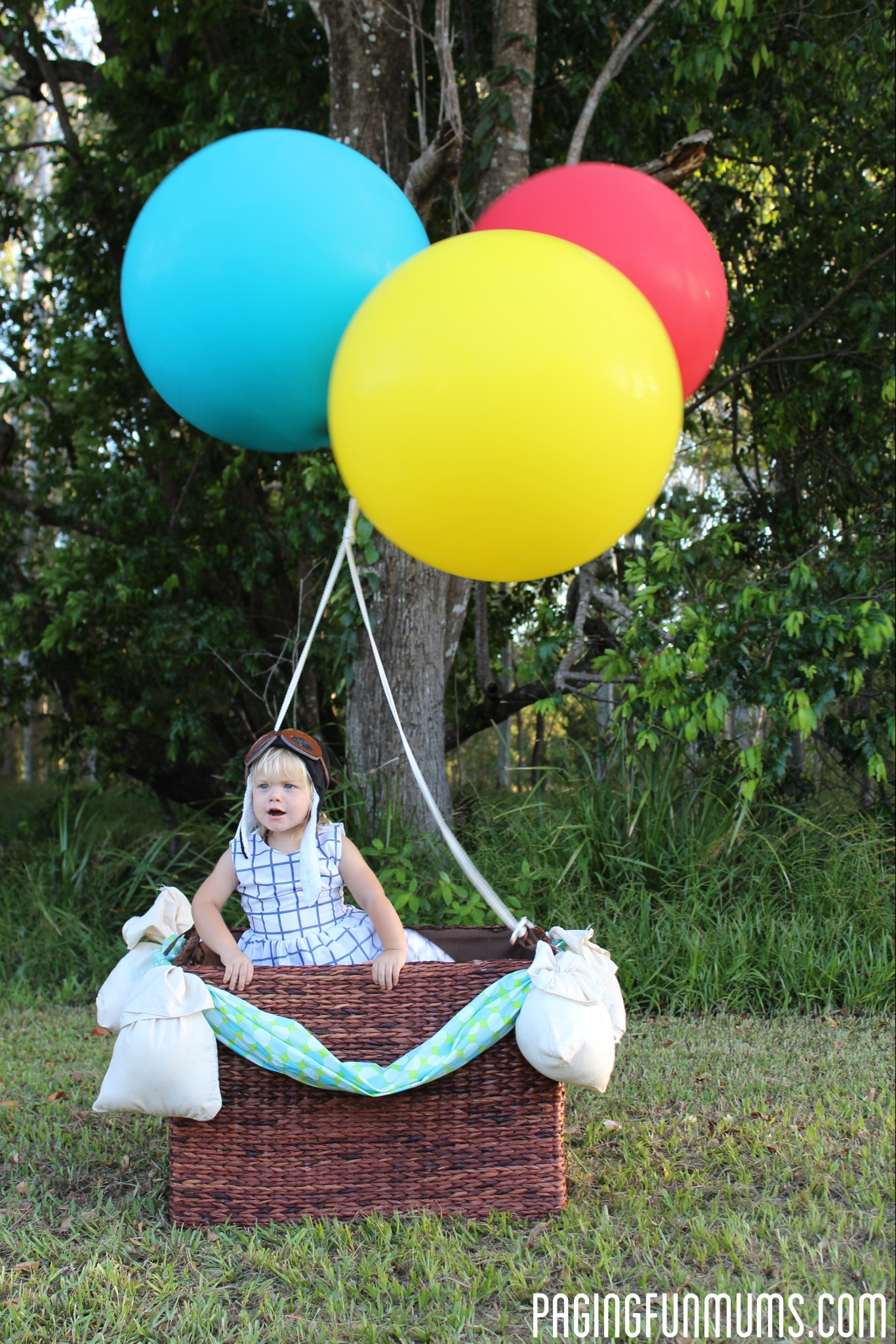 DIY Hot Air Balloon Photo Prop – (Louise)