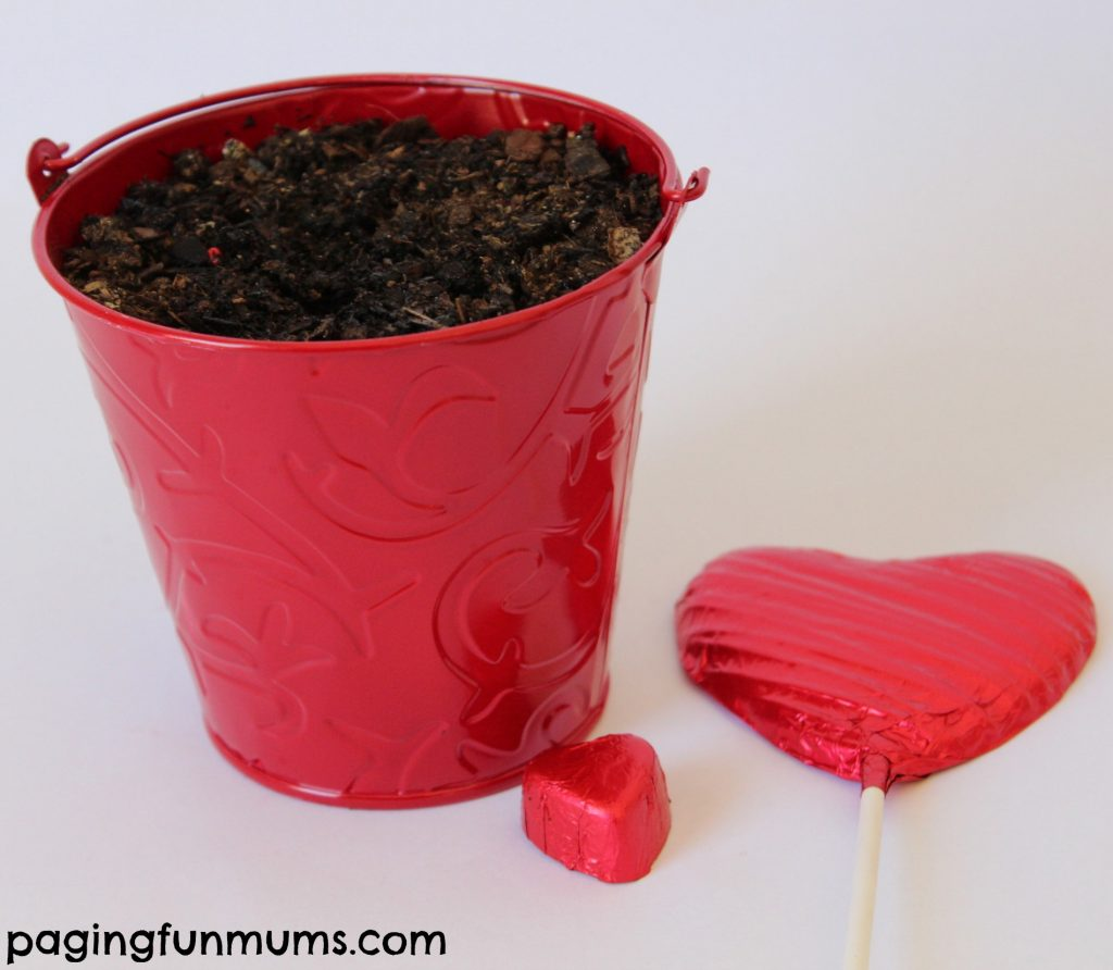 Valentine's Day Chocolate Hearts