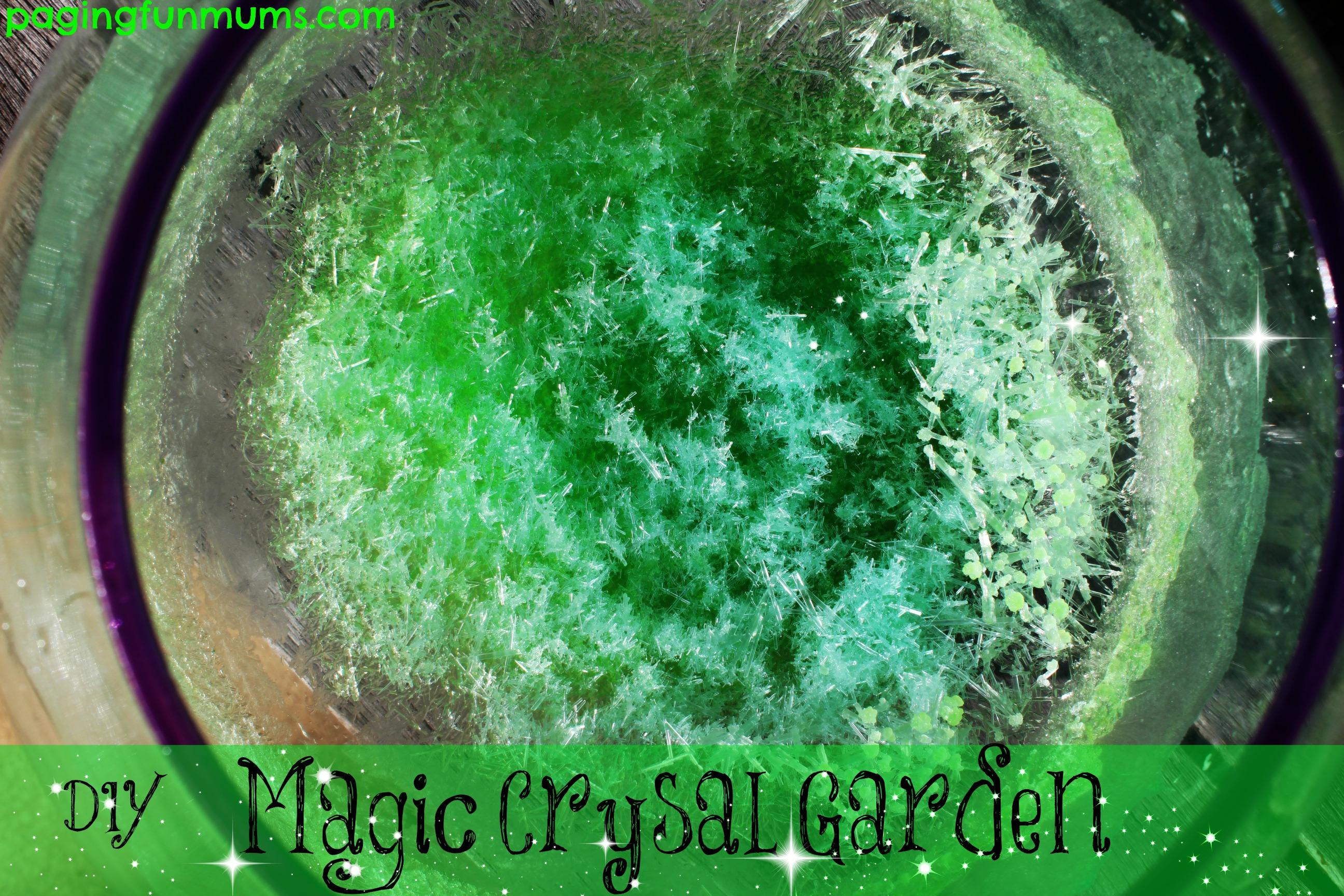 Diy Magic Crystal Garden