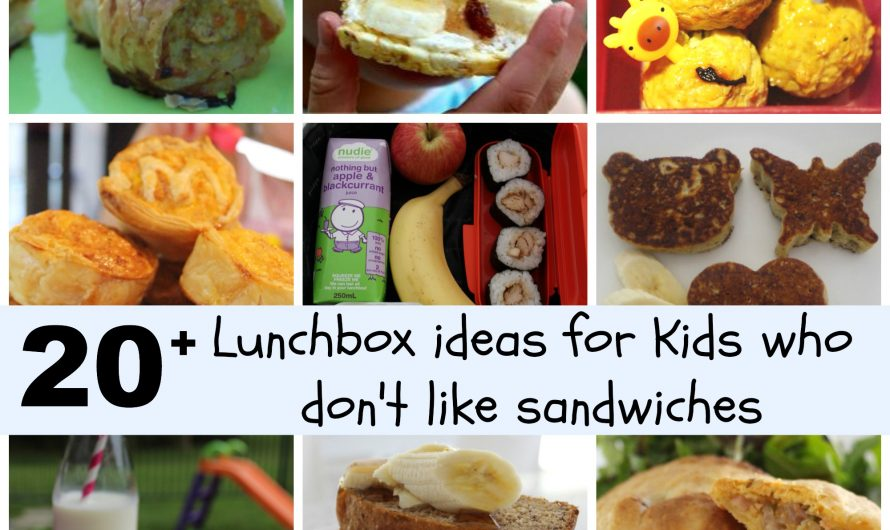 20+ Lunchbox Ideas for kids who don't like Sandwiches