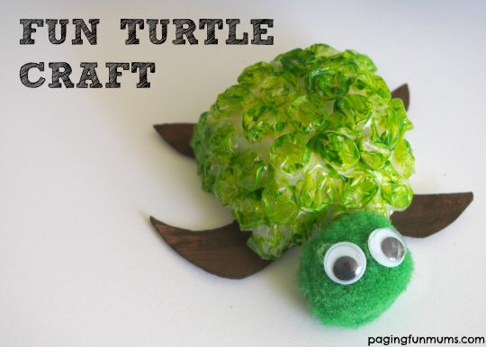 Fun Turtle Craft