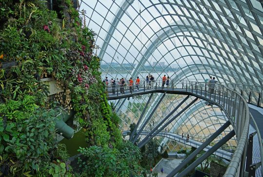 800px-Cloud_Forest,_Gardens_by_the_Bay,_Singapore_-_20120617-03