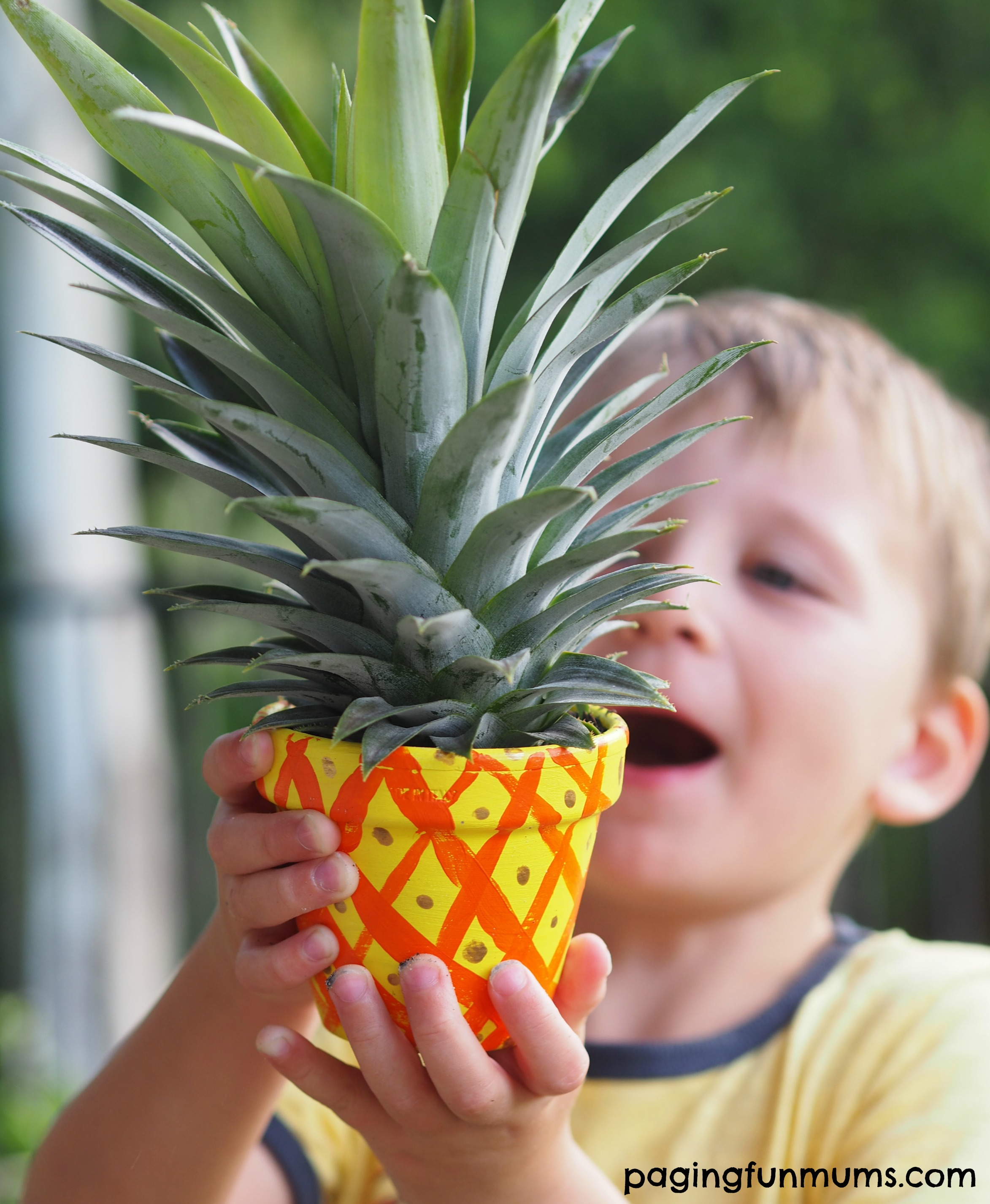 Kid Made Pineapple Planters