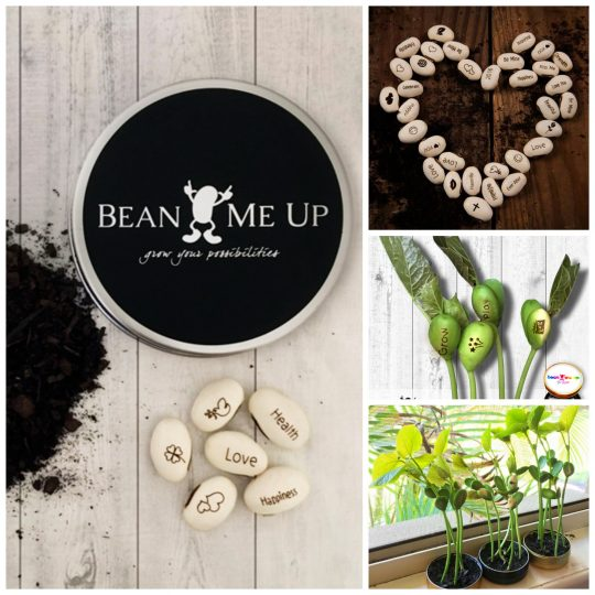 Unique gift idea! Grow your own beautiful messages from these amazing beans.