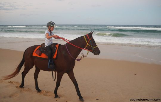 Rainbow Beach Horse Rides - family friendly travel!