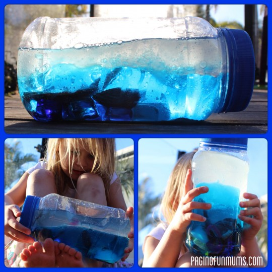 Ocean Discovery Bottle – Video Tutorial