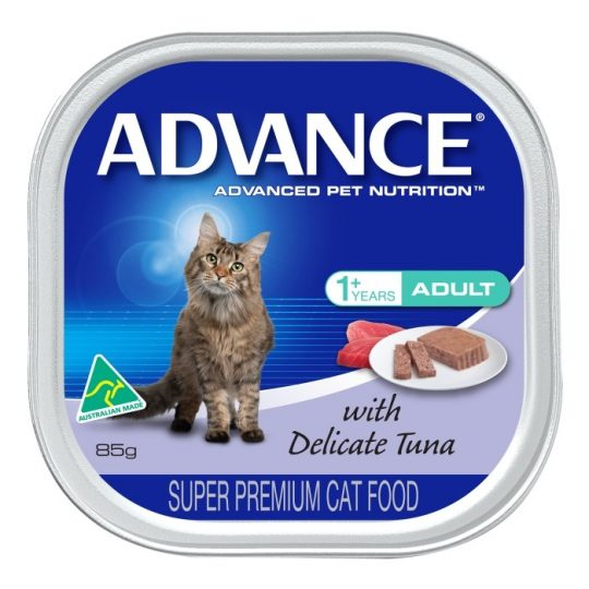 How Often To Change Dry Cat Food